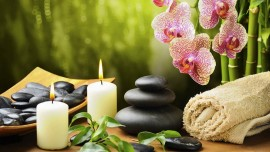Achieve the zenith of success by offering various types of spa services
