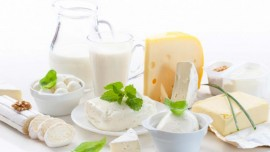 Indian dairy to explore trade