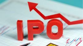 Apex Frozen Foods IPO oversubscribed