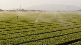 Jain irrigation to work for development of micro irrigation system network in Rajasthan