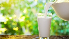 Dairy products to increase prices in coming months