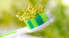 Time to join the herbal revolution in oral care sector