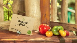 ​Organic baby food industry to gain momentum this year
