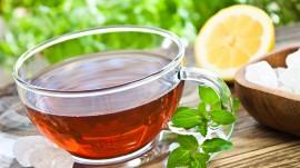 Fabindia to supply organic tea to China next year