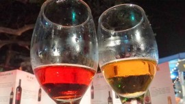 Pause Wines to participate in Bandra Wine fest
