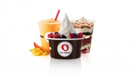 Red Mango  s real froyo redefining health in India