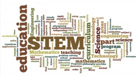 STEM Educators: India on the road for progress