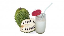 SVA Launches Healthy Soursop Juice