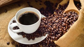 Three top cafe investors exploring India