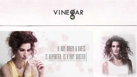 Vinegar to open more stores