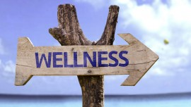 How the idea of Wellness business is going to hit the bull's eye in India