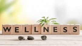 Ideas to be an Entrant in Wellness Industry