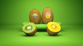 Zespri Joins hands with The Mumbai Dabbawalas for the distribution of its newest kiwifruit variety